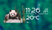 Pandas Time Date and Weather Rainmeter skin