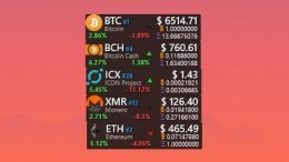 Cryptocurrency Tracker Skin