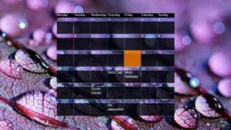Ultra Calendar with Notes Skin