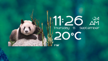 Pandas Time Date and Weather Skin